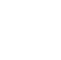 GTS Software Experts
